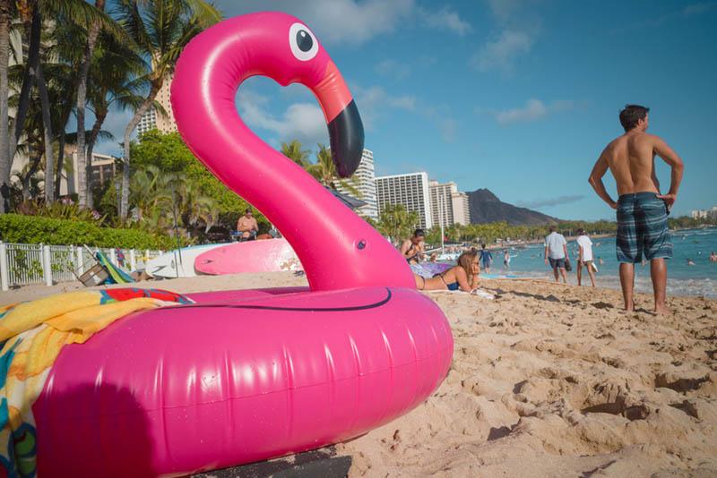 Street Photography and Ricoh GR III-3-Waikiki Hawaii-_T002062-flamingo