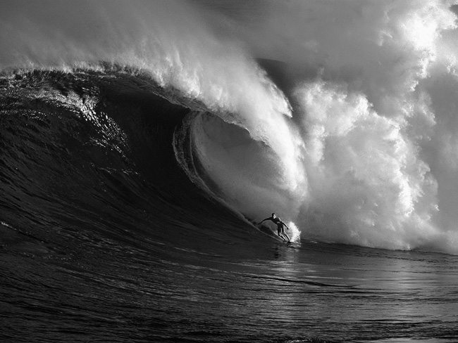 reef_surfing_wallpaper-normal