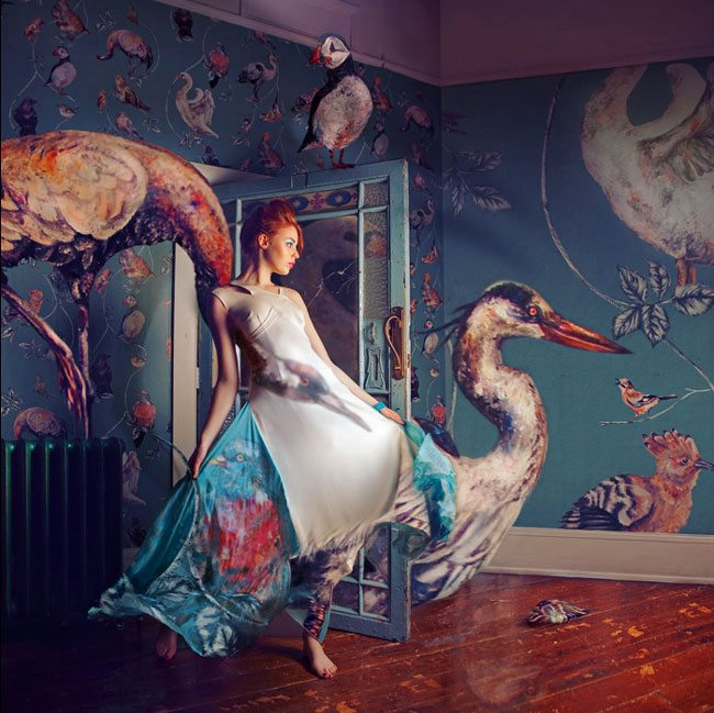 Miss-Aniela-birdFashion