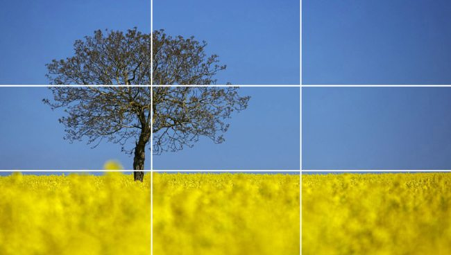 Rule-of-Thirds-Tree