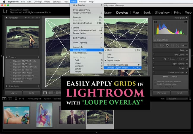 Dynamic Symmetry Grids Best for Photographers and Painters [240]