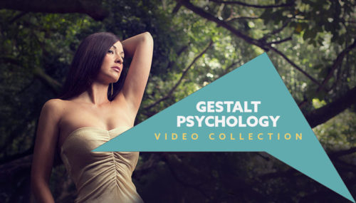gestalt-psychology-canon-of-design-video-collection-800px