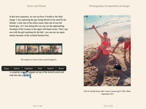 photography-composition-and-design-dynamic-symmetry-ebook-screenshot-2