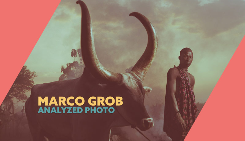 Mastering-composition-with-Marco-Grob-bull-photo-analyzed-intro