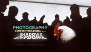 Photography-Composition-and-Design-with-Shadows-Gueorgui-Pinkhassov-intro