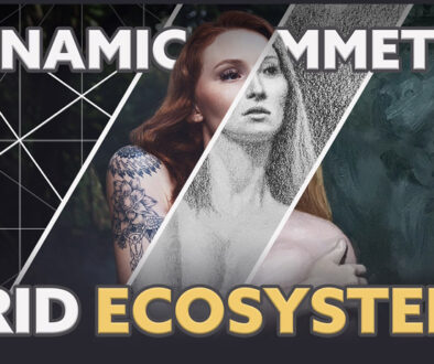 dynamic-symmetry-grid-package-intro-for-beginners-ecosystem