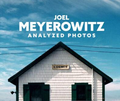 Joel-Meyerowitz-Photos-Analyzed-intro